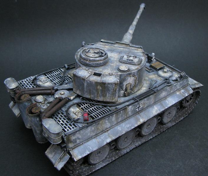 tiger-1_13